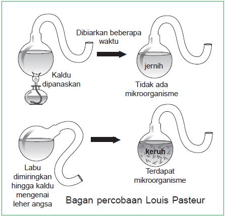 Percobaan Louis Pasteur - Labu leher angsa