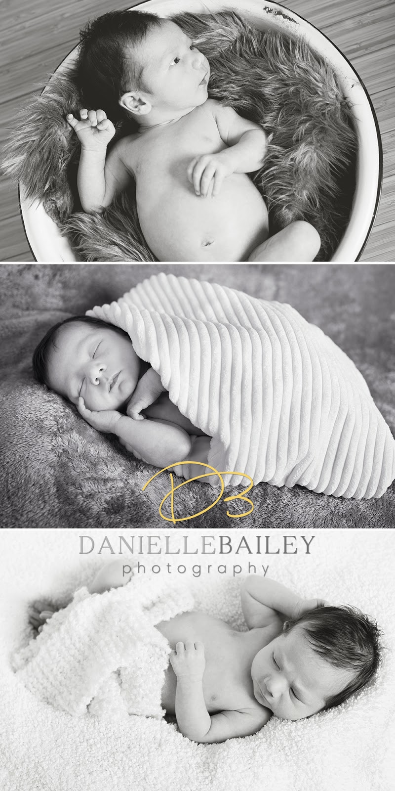 To book a newborn session with danielle bailey photography call 509 594 9803 or visit www daniellebaileyphotography com