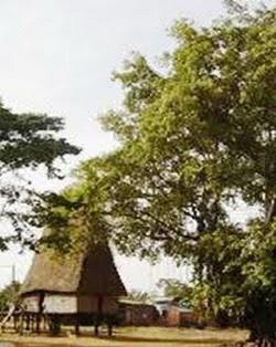 Nhà rông Rơ Hai- Kon Tum