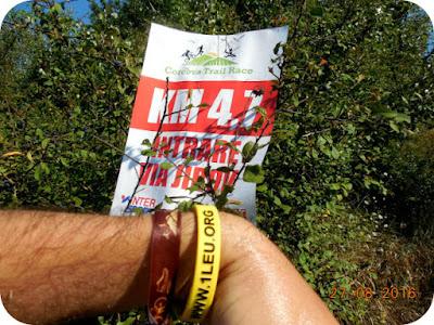 ultima hidratare pentru ultimii 4,7 km