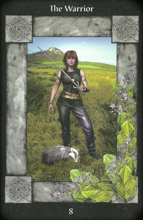 The Warrior. Image from Celtic Tarot Cards, Meaning from Nature: symbols of the ancient Celts http://www.dnfrost.com/2017/03/celtic-tarot-cards-meaning-from-nature.html An inspired contribution by D.N.Frost @DNFrost13 Part 4 of a series.