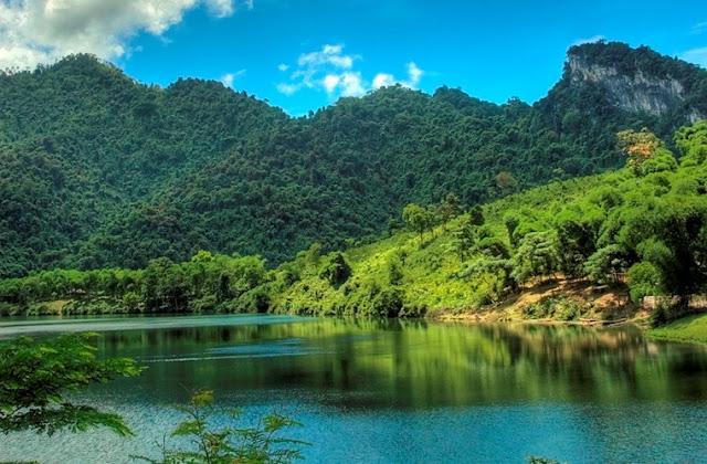Khám phá 5 điểm du lịch có hệ động thực vật độc đáo nhất Việt Nam