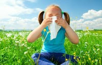 Lies You've Been Told About Allergies