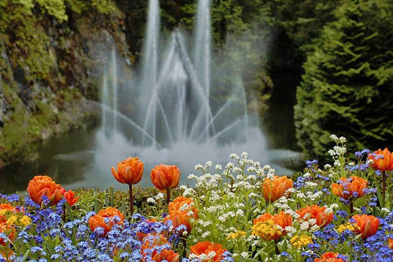 4. Butchart Gardens, Canada - 5 Incredible Gardens That Will Blow Your Mind