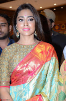 Shriya Saran Looks Stunning in Silk Saree at VRK Silk Showroom Launch Secundrabad ~  Exclusive 160.JPG