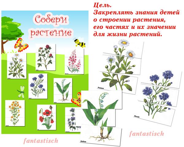 игра на знакомство для детей в саду