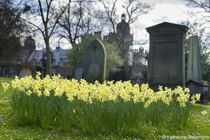 Greyfriars Kirkyard Things to Do in Edinburgh in 3 Days Itinerary