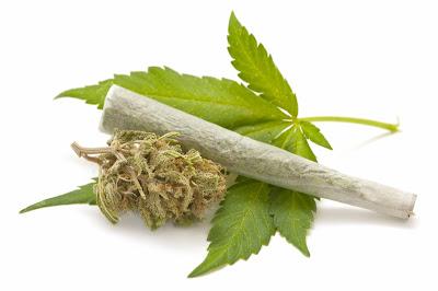 legalización, curiosidades