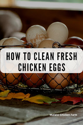 Cleaning fresh eggs