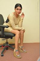 Actress Pooja Roshan Stills in Golden Short Dress at Box Movie Audio Launch  0089.JPG