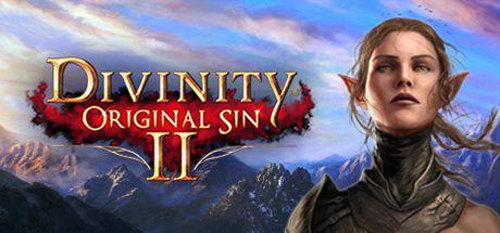 Divinity Original Sin 2 GOG FREE