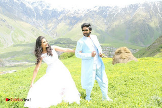 Vikram Prabhu Shamili Starring Veera Sivaji Movie Gallery  0040.jpg