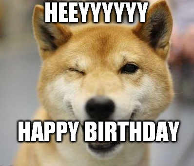 happy birthday dog meme