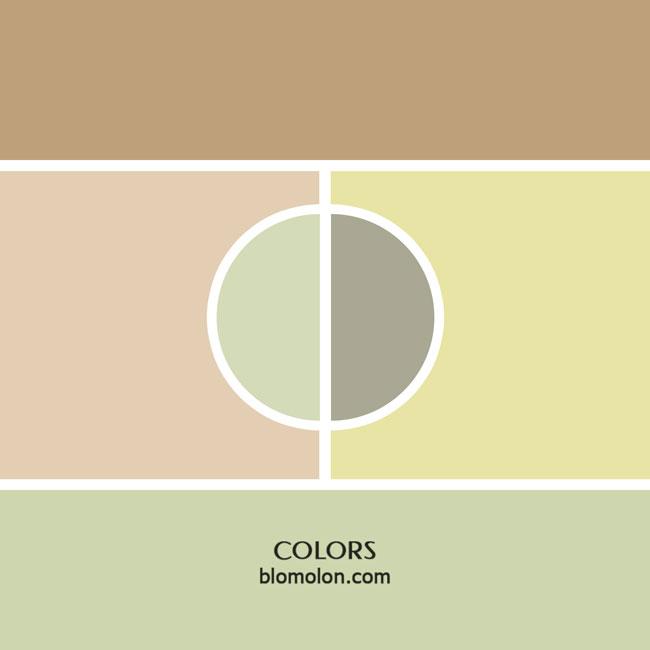 variedad_en_color_color_9