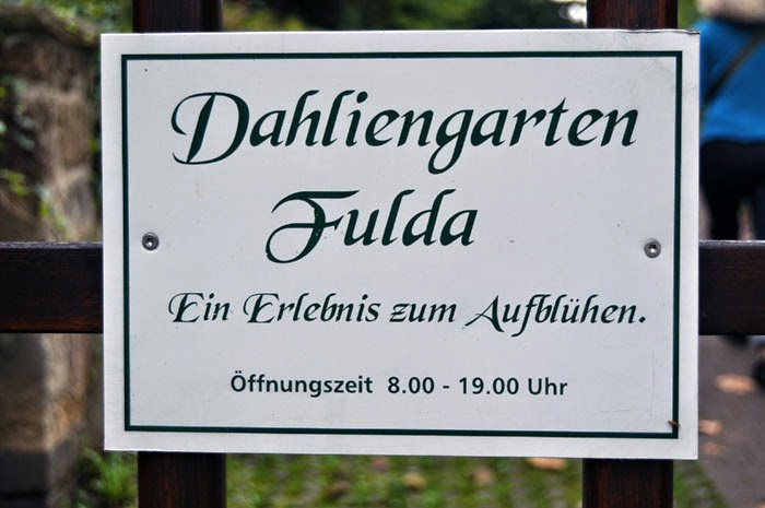 Dahlia Garden Fulda, Germany