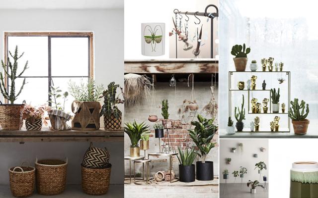 Trend Urban Jungle : Muy bien ¡shop till you drop interior trends at deens