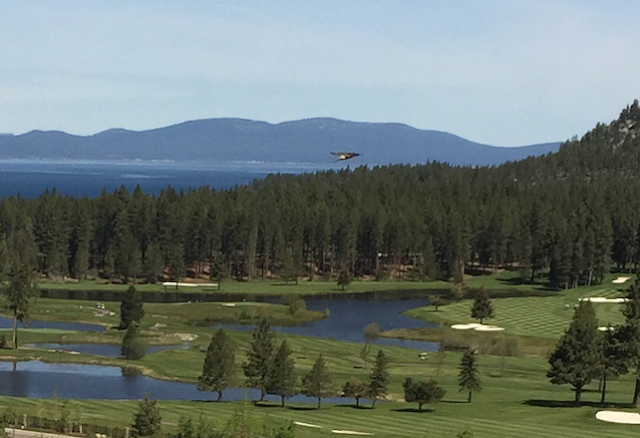 UFO News ~ Triangle UFO Over Lake Tahoe, CA and MORE Lake%2BTahoe%252C%2BCalifornia%252C%2BMoon%252C%2BTower%252C%2BAztec%252C%2BMayan%252C%2BWarrier%252C%2Bfight%252C%2BMike%2BTyson%252C%2B1995%252C%2Btime%252C%2Btravel%252C%2Btraveler%252C%2BLas%2BVegas%252C%2BUFO%252C%2BUFOs%252C%2Bsighting%252C%2Bsightings%252C%2Balien%252C%2Baliens%252C%2BET%252C%2Bspace%252C%2Bnews%252C%2Btech%252C%2BDARPA3