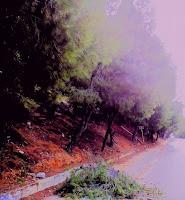 http://ilioupoli-athens.blogspot.gr/2017/12/blog-post.html