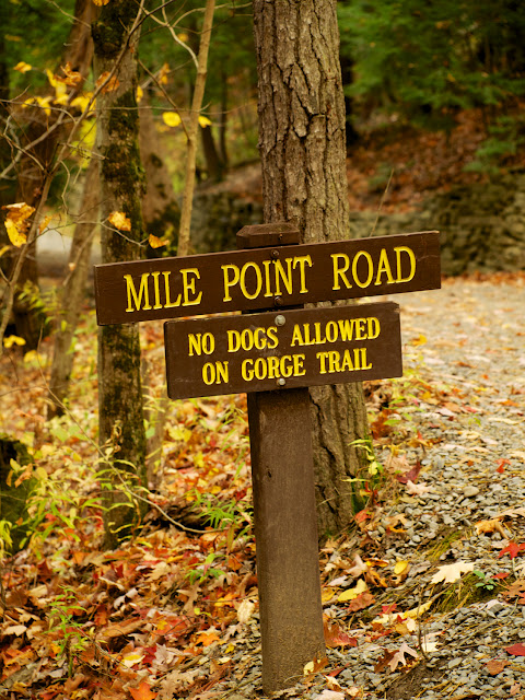 Mile Point Road, senders en Watkins Glen