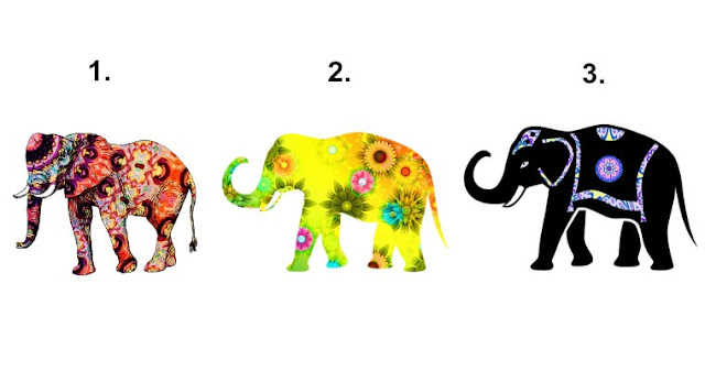 What Elephant You are Most Drawn To? It Reveals The Soul Contract You Are Currently Working On!