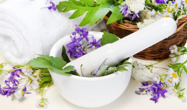 Inilah 6 Obat Herbal Sinusitis Dengan Bahan Alami