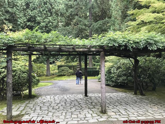 Modern Japanese garden Portland