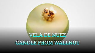 Vela de nuez, OIL WICK, Candle from wallnut
