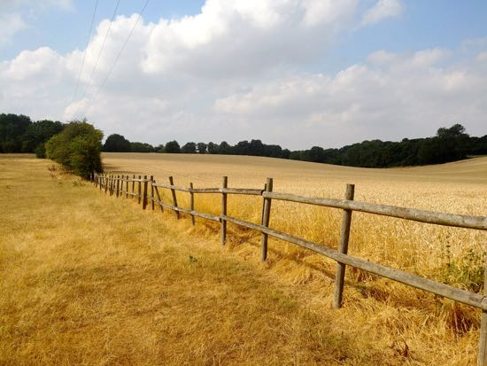Photograph taken along the route of Walk 78: Welwyn NE Loop  by Hertfordshire Walker released under Creative Commons BY-NC-SA 4.0