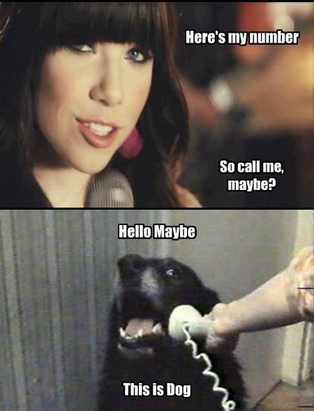 "25 Best ""Call Me Maybe"" Memes ~ Damn Cool Pictures"