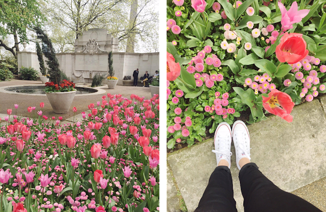 London-Tulips-Feet-Park-May-Day