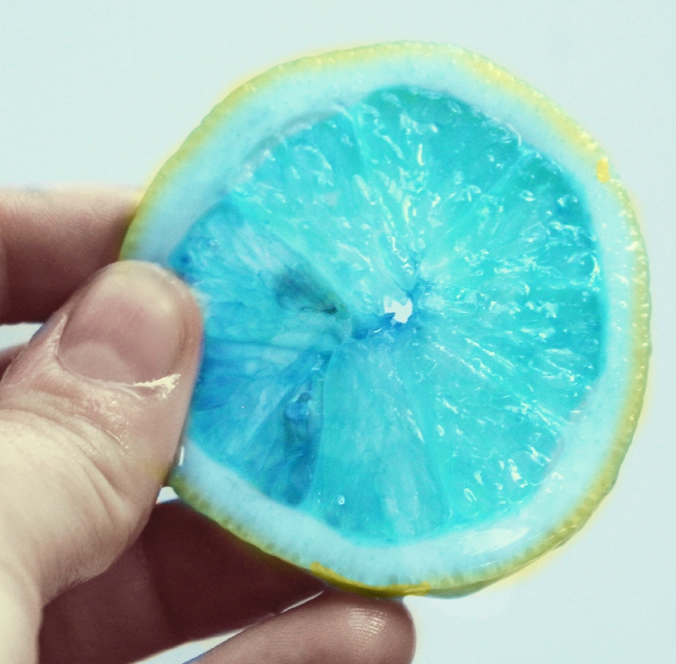 We Lived Happily Ever AfterDying Lemons with Food Coloring ...