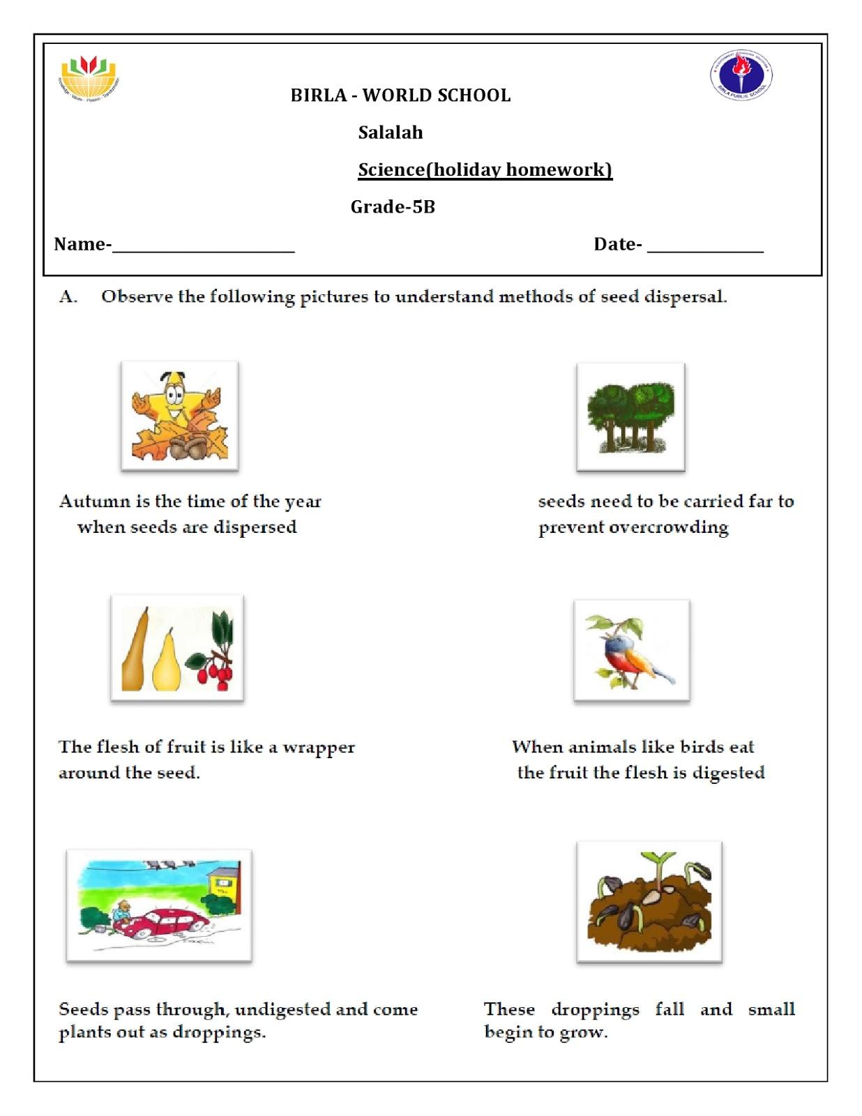 Holiday Homework For Grade 5