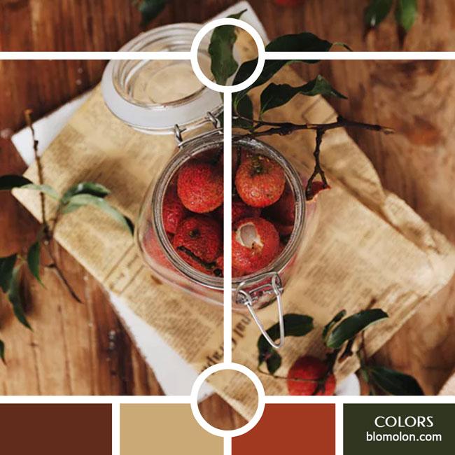 variedad_en_color_color_37