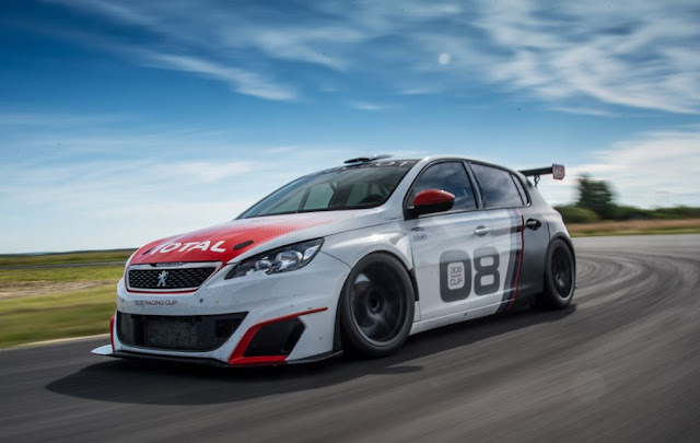 Peugeot 308 Racing Cup audit and spesifications