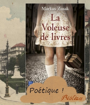 la voleuse de livres Markus Zusak The book thief avis chronique critique blog Netflix