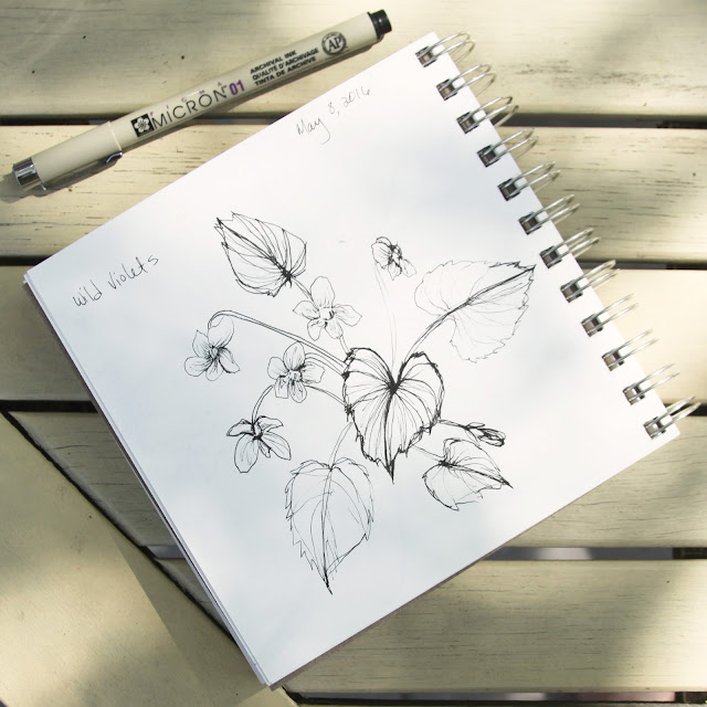 sketchbook, violets, drawing, micron, Anne Butera, My Giant Strawberry