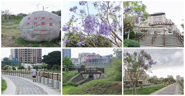 台中大里|旱溪排水水利園區|藍花楹公園|生態池|堤頂步道散步