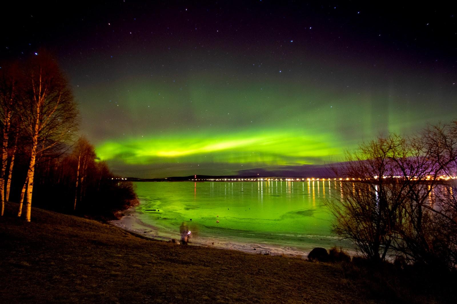 Rovaniemi e Lapponia finlandese: quarto giorno