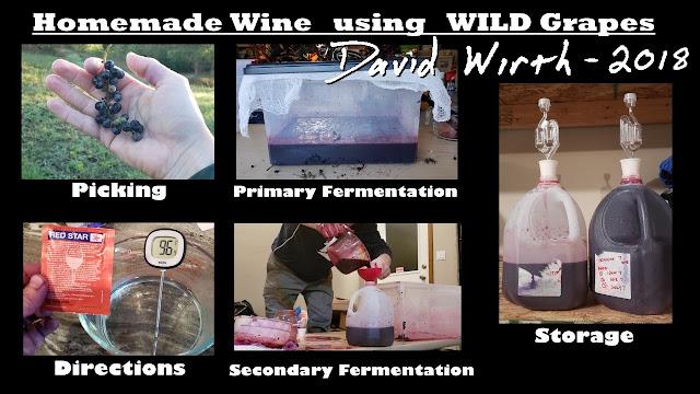 homemade wine using wild grapes