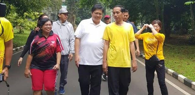 Senior Golkar Sudah Yakin Airlangga Hartarto Pengganti JK Dampingi Jokowi, Ini Alasannya
