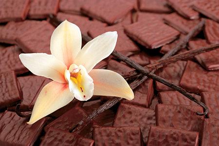 десерты из шоколада, сладости из шоколада, что можно приготовить из шоколада, как правильно растопить шоколад, какой бывает шоколад, рецепты из шоколада, интересное про шоколад, кондитерские изделия, лакомства, сладости, из шоколада, все про шоколад, что можно приготовить из шоколада, шоколадные десерты, шоколадные подарки, Шоколадные рецепты, Бисквитные пасхальные яйца, Быстрое шоколадно-овсяное печенье без выпечки, Готовим шоколадные конфеты с начинкой: коллекция рецептов и идей, Домашняя ореховая паста «А-ля нутелла» на растительном масле, Как растопить шоколад?, Клубника в шоколаде: рецепты, идеи, оформление, Конфетный ноутбук (МК), Конфеты «Кокосовый рай» в белом шоколаде с желейной начинкой, Конфеты с пожеланиями — идея для любого праздника, Конфеты «Сухофрукты в шоколаде», Конфеты «Чернослив в шоколаде» с изюмом и курагой, Ложки с шоколадом, Пасхальные шоколадные гнездышки, Сладкие яйца «картошка» в глазури, Спортивные снаряды из конфет — оригинальные идеи, Сырая пасха с шоколадом, Творожно-шоколадный десерт с бананом, Чернослив в шоколаде, Шарики Баунти, Шоколадная начинка для блинов и пирогов. Идеи и рецепты, Шоколадная такса Twix, Шоколадно-банановые гоблины на Хэллоуин, Шоколадные блины и оладьи: коллекция рецептов, идей и советов, Шоколадные карандаши в пенале (МК), Шоколадные кексы в яичной скорлупе, Шоколадные конфеты с кремовой начинкой, Шоколадные конфеты с нутеллой, Шоколадные пасхальные яйца с творожной начинкой, Шоколадные яйца в яичной скорлупе, Шоколадный кекс в кружке, «Шоколадный чудо-фокус» — кекс в кружке, «Brigadeiro» — бразильские шоколадные трюфели на сгущенке,