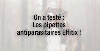 On a testé : Les pipettes antiparasitaires Effitix !