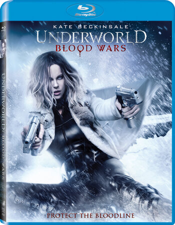Underworld Blood Wars (2016) Dual Audio Hindi 480p BluRay 300MB ESubs Movie Download