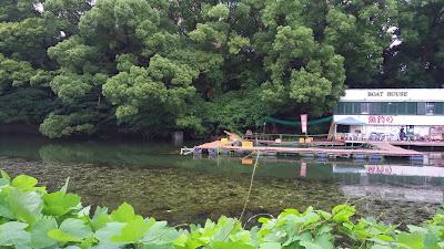 赤坂見附外濠草木生い茂る魚釣り場