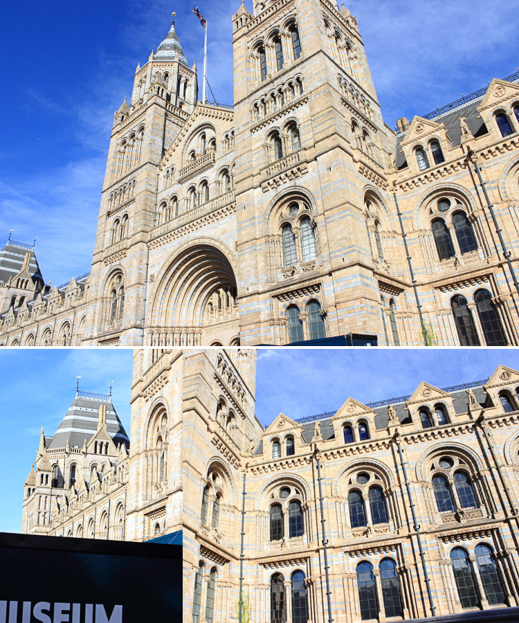 London Traveldiary Natural History Museum, London Reise, London Tipps, London Museen, London kostenlos