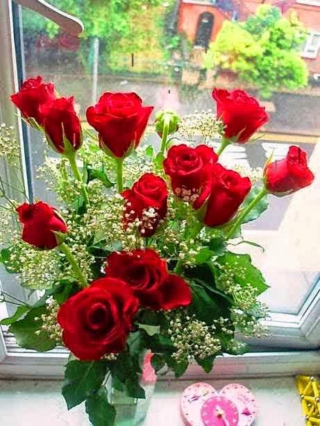 3 Gambar Bunga Mawar Merah Indah Paling Banyak Dicari Taman