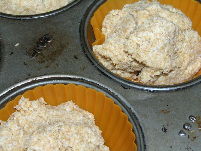 whole grain sourdough biscuits