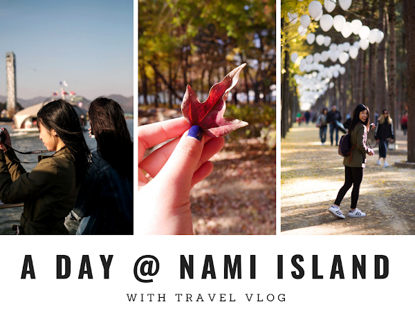 가자 Korea Diary 9: Day Trip To Nami Island [With Vlog]