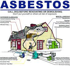 Signs of Toxic Asbestos Exposure in Your Pets