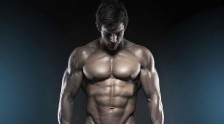 Pengertian dan Fungsi Otot